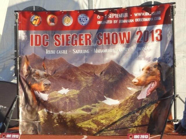 IDC 2013